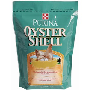web_oyster-shell