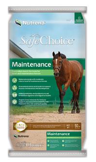 SafeChoiceMaintenance