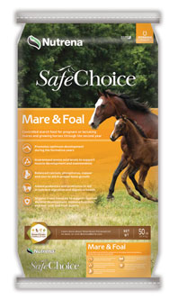 safechoice mare&foal