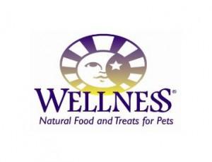 wellnesslogo