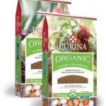 Organic Layer