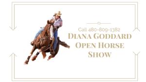 Diana Goddard Open Horse Show