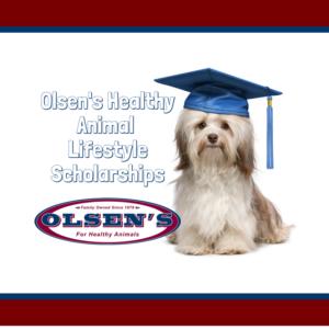 Olsen's Healthy Animal Lifestyle Scholarship Program