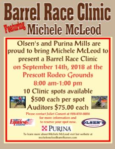 Barrel Race Clinic Featuring Michele McLeod
