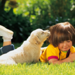 boy and puppy lawn seed