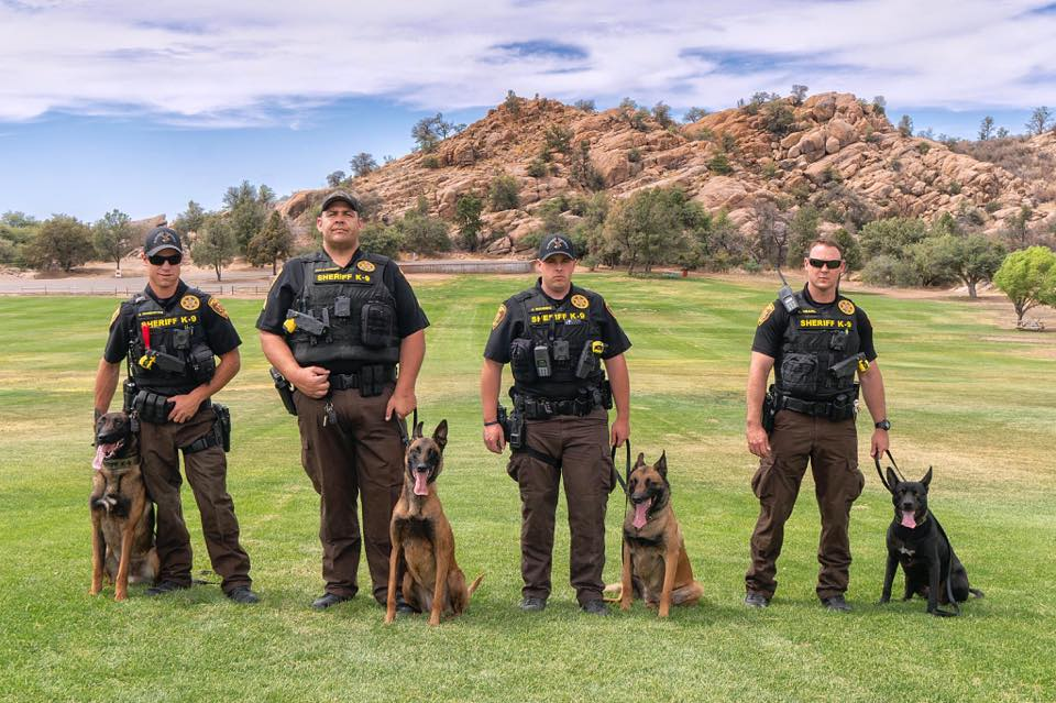 Natural Balance K-9 Officers Round Up